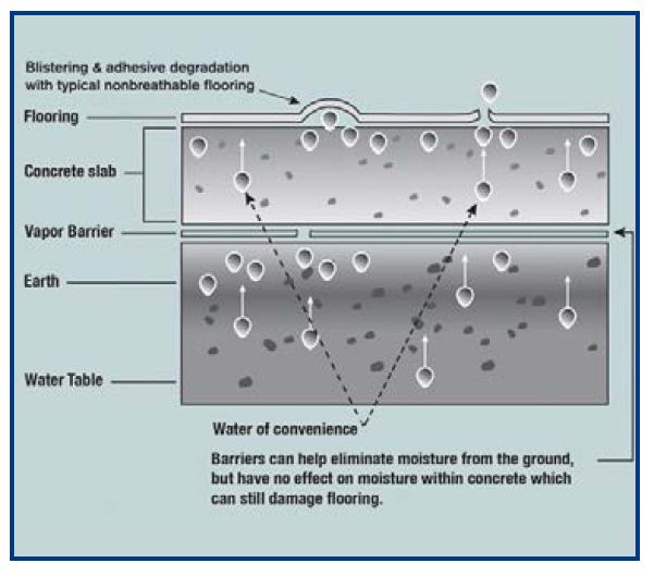 flooring-moisture